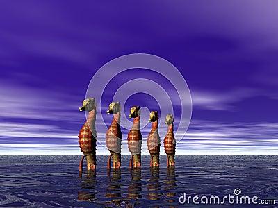 Seahorse row
