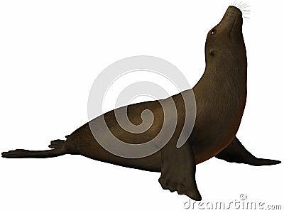 Seal 3D