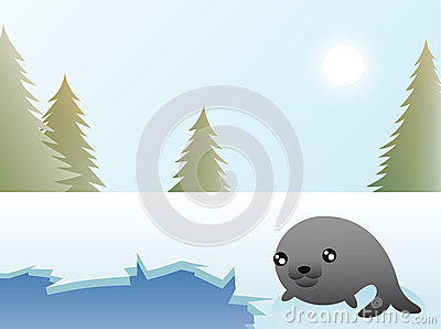 Seal Christmas Card