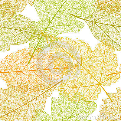 Free Seamless Autumn Leaves Pattern Stock Photo - 15847430