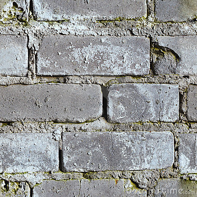 Seamless background - dirty moldy brick wall