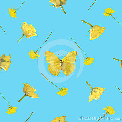 Seamless background of yellow butterfly with roses