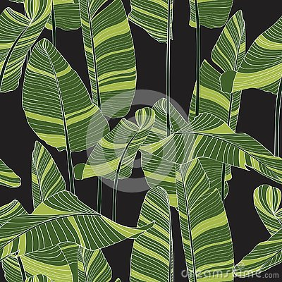 Free Seamless Banana Leaf Pattern Background. Simple Green Drawing Line Art Illustration. Stock Photo - 138733520