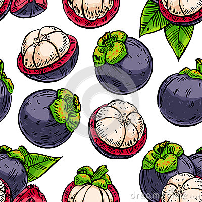 Seamless colorful mangosteens Vector Illustration