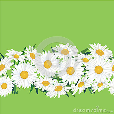 Seamless floral pattern border with flower