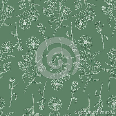 Seamless floral pattern, Calendula flower isolated on green background, botanical hand drawn doodle vector illustration Vector Illustration