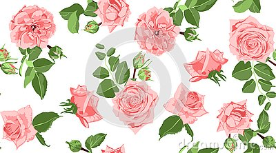 Seamless Floral Rose Pattern with Leaves. Vector Illustration