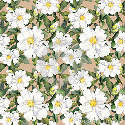 Free Seamless Floral Wallpaper With White Flowers Magnolia, Peonies. Watercolour Stock Image - 73998121