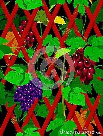 Seamless grapevine