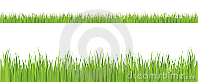 Seamless grass illustration