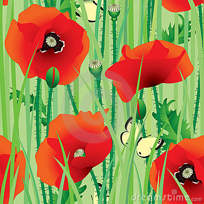Free Seamless Of Poppy Royalty Free Stock Images - 3157339