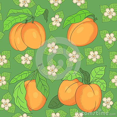 Seamless Pattern With Apricots Stock Photos - Image: 25974953