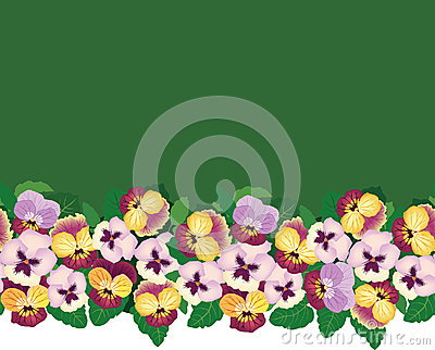 Seamless pattern border with multicolor flowers