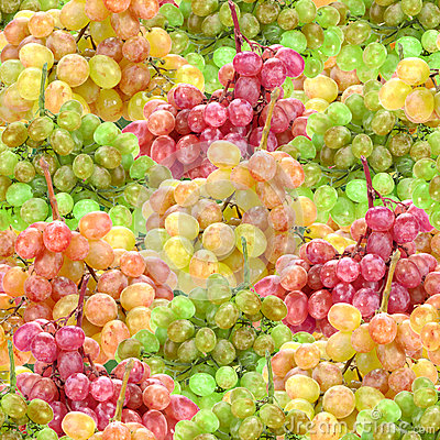 Seamless pattern of fresh ripe motley grape