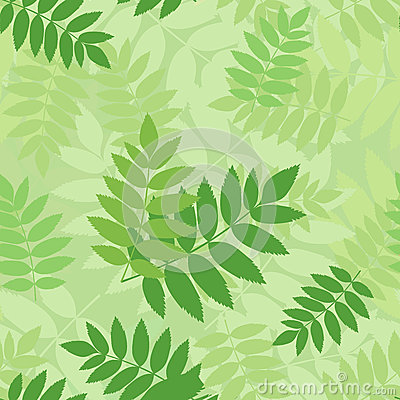 Vector seamless pattern with green rowan leaves.