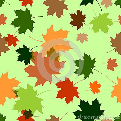 Seamless pattern with maple foliage