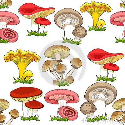 Free Seamless Pattern Mushrooms Russula, Chanterelle, Champignon, Gr Royalty Free Stock Images - 110457319