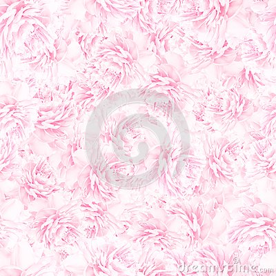 Free SEAMLESS Pattern Of Pink Peony Blossoms Stock Photos - 106137773
