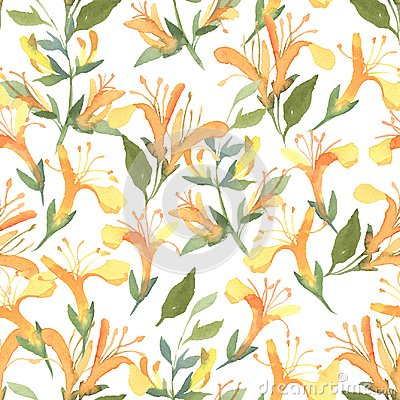 Free Seamless Pattern Of Watercolor Yellow Lonicera Flowers On White Stock Photo - 117019360