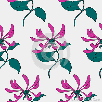 Seamless pattern. Pink flowers lonicera. Vector background. Vector Illustration