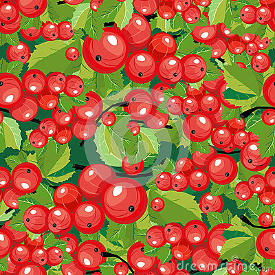 Seamless pattern red currant