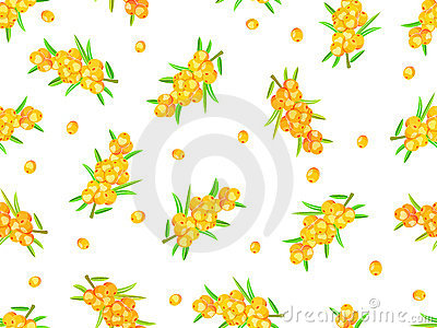 Seamless pattern sea-buckthorn berries