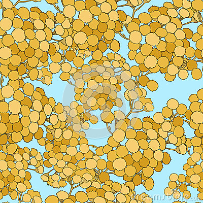 Seamless pattern with tansy