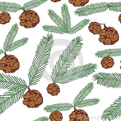 Free Seamless Pattern Tree Twigs And Cones Painted Line And Colored On White. Tree, Fir, Pine Cones, Twigs. Illustration Stock Photography - 104128502