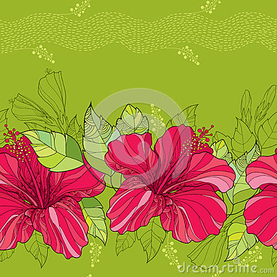 Free Seamless Pattern With Chinese Hibiscus Flower In Red And Stripes On The Green Background Royalty Free Stock Photography - 64245547