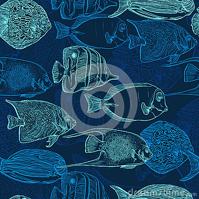 Free Seamless Pattern With Collection Of Tropical Fish. Vintage Set Of Hand Drawn Marine Fauna. Stock Photo - 60658690