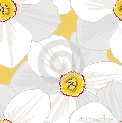Free Seamless Pattern With Flowers Daffodils Royalty Free Stock Photography - 26239977