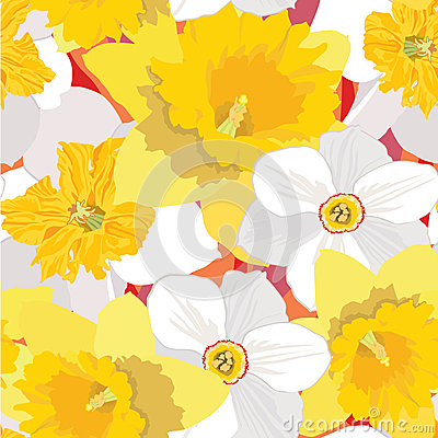Free Seamless Pattern With Flowers Daffodils Royalty Free Stock Photo - 26240005