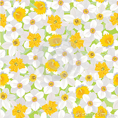 Free Seamless Pattern With Flowers Daffodils Royalty Free Stock Photography - 26240027