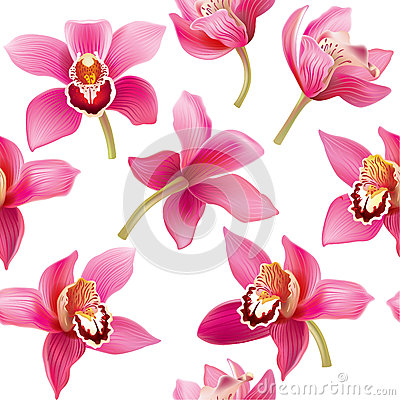 Free Seamless Pattern With Orchid Royalty Free Stock Photo - 41848505