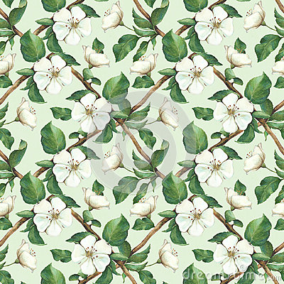 Free Seamless Pattern With Watercolor Apple Flowers Royalty Free Stock Image - 38373186