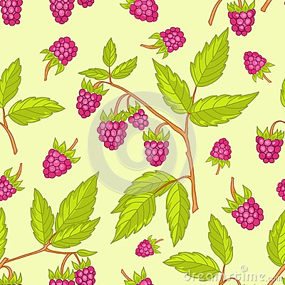 Seamless raspberries pattern.