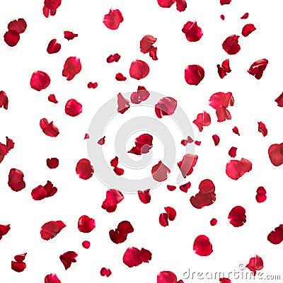 Free Seamless Rose Petals Royalty Free Stock Photos - 25269678