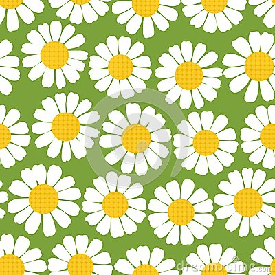 Seamless summer camomiles pattern.