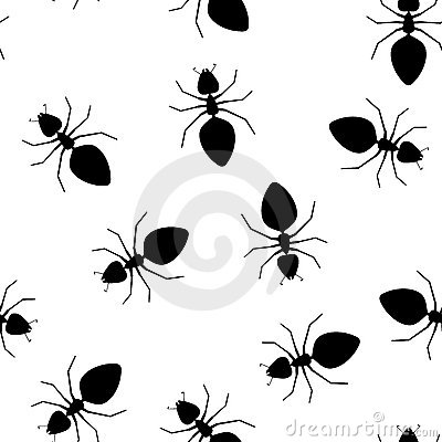 Seamless  texture - ants pests