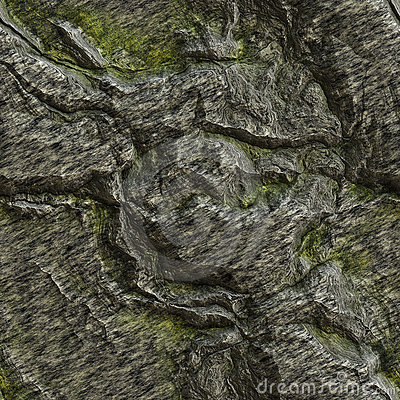 Seamless texture of a lichen covered rock