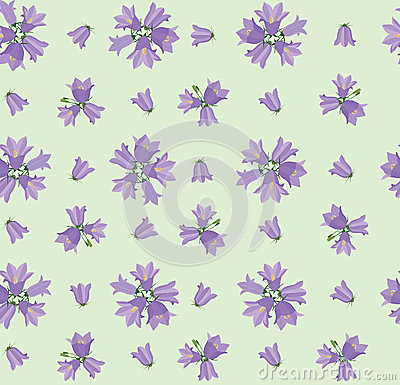 Seamless texture with meadow flower