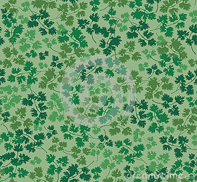 Seamless texture with parsley leaves
