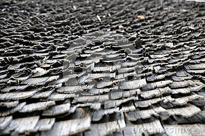 Seamless texture of shingle wooden roof