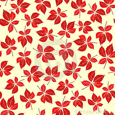 Seamless virginia creeper pattern