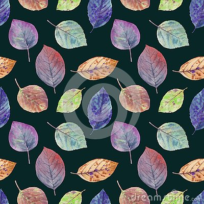 Autumn leaves of different colors drawn watercolor. Stock Photo