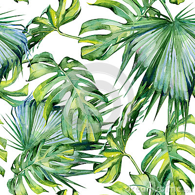 Free Seamless Watercolor Illustration Of Tropical Leaves Stock Photos - 80379513