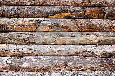 Seamless Wooden Planks Wood Stock Photo