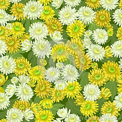 Seamless yellow white chrysanthemum backgrounds