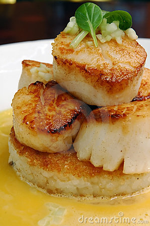 Free Seared Scallops 2 Stock Photography - 3043982