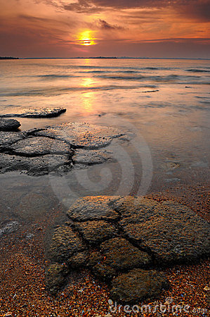 Free Seascape Of Mollusk Fossil Site,Thailand Stock Image - 16478901